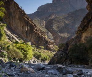 Culture & Nature - Wadi Tanuf