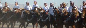 Culture & Nature - Horse Show